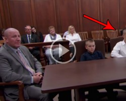 Hard Man Detective and Boxing Teacher Surprises Everyone in Court. Astonishing