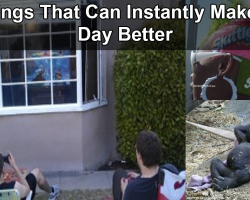 16 Things That Can Instantly Make Your Day Better