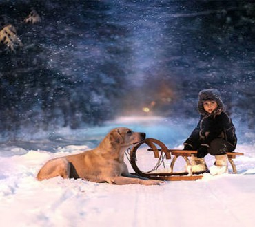 This Russian Mom Takes Magical Pics of her Kids Paired with Animals from Her Farm